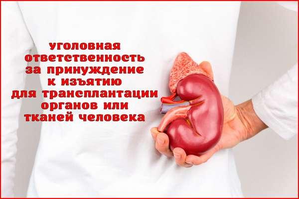 Уголовная ответственность за принуждение к изъятию органов или тканей человека для трансплантации