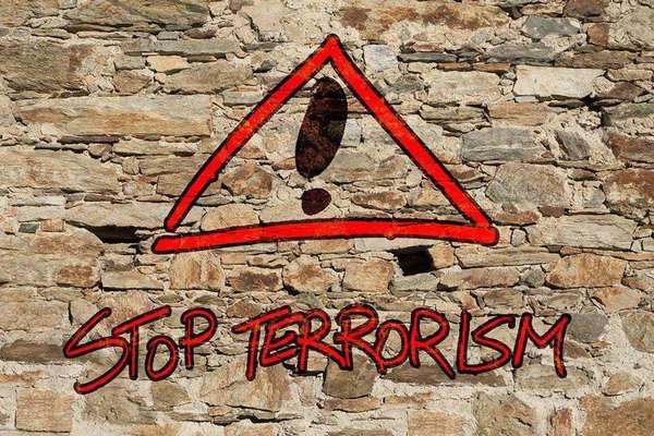 Классификация террористической деятельности