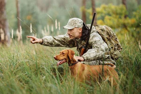 запрещенные места для охоты
