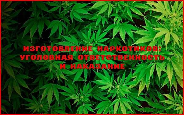 Уголовная ответственность за незаконное изготовление наркотиков
