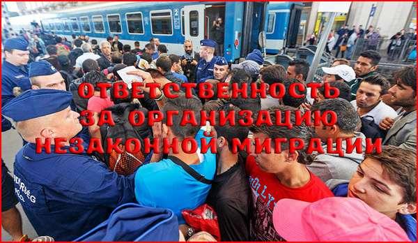 Уголовная ответственность за организацию незаконной миграции — статья 322 УК РФ