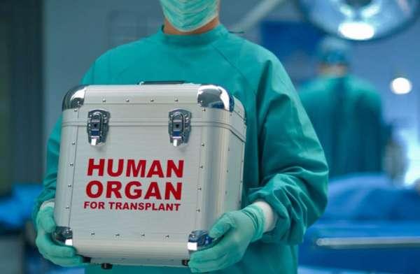 Принуждение к донорству